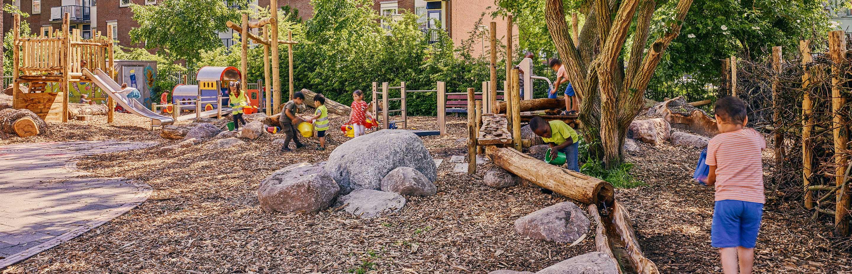 Eetbare, groene schoolpleinen