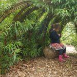 Natuurlijke hut schoolplein